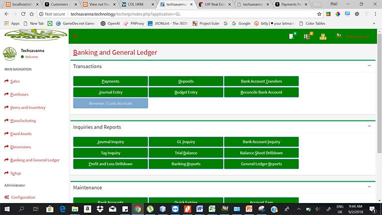 ERP-Financial-Accounting